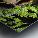 EVOKED BY NATURE Collection 2-4 Metal print