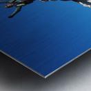 C19CE809 D88F 43E6 8A46 7F33E6E925A4 Metal print