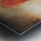 Solace Metal print
