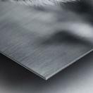 Fierce  Metal print