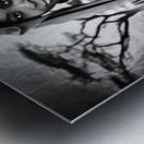 africa 2 Metal print