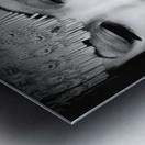 asia 1 Metal print