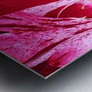Red Wave Metal print