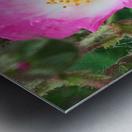 The Bloom Metal print