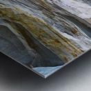 Vertical Vision Metal print
