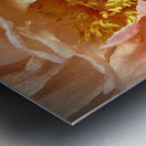 2BC8AE79 9B6B 4D45 8C3B 941CC622F439 Metal print