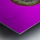 Kiwi Redux II Metal print