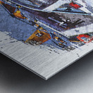Canadian Snowbirds Metal print