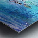 Three Whimbrels Metal print