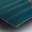 inbound3613842063344723015 Metal print