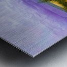 Dunes at Cape May Metal print