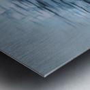 Preening Gulls Metal print