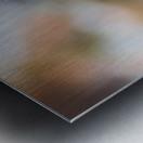 Blossom & The Bee Metal print