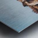 IMG 1018 Metal print