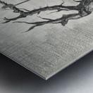 RA 011 - סעודה אחרונה Metal print