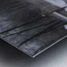 16864_738586360532_4294197_n Metal print