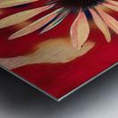 Two Coneflowers Metal print