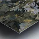 Agapanthus  Metal print