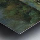 Calhoun pond Metal print