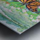 CountyMonrachButterflies Metal print