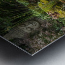 Divin Jardin d   eau   Divine Water Garden Impression metal