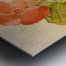 Orange Nasturiums Impression metal
