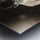 Urban Loneliness - The Hidden Disaster Metal print