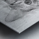 Kitten Noir Metal print