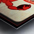 1956 Chicago Cardinals Viewfinder Slide Art Metal print