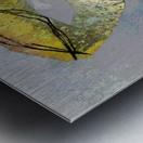 Cokoriko Metal print