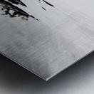 B&W Silky  Metal print
