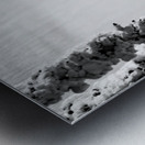 Silver Sliver Metal print