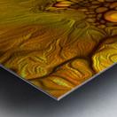 POLLENS SUMMER GLOW 6 Metal print