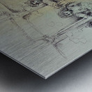 The Bluebell Girls Metal print
