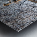 Earth Mover Metal print