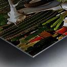 Vespa As Part Of Succulent Display Metal print