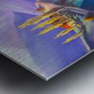 Moeciu landscape  Metal print