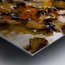 Autumnal Cut Metal print