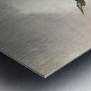 Flight Of The Heron Metal print