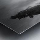 Frozen mist Metal print
