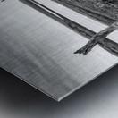 Coastal Marshland Metal print