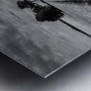 Field Shapes 2 Metal print
