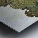 Riverside, Wallingford, Berkshire Metal print