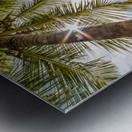 Palm and tropical beach Metal print