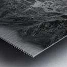 Nestled Beneath Metal print