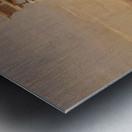The Prostasis Metal print