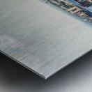 IMG_0140 Edit Metal print