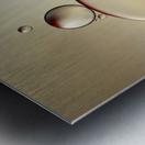 the stragglers Metal print