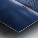 Carrasqueira azul Metal print