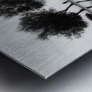 KarAŸA±yakalA±lar Metal print